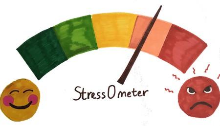 Gauging stress before the crash